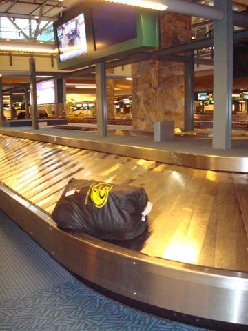 sw_luggage2